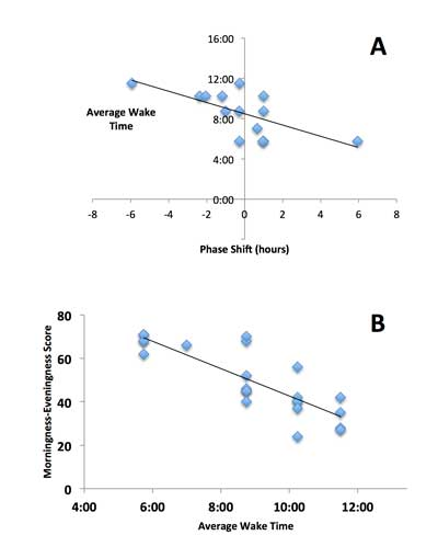 Diurnal Preference Predicts Phase Differences in Expression of Human